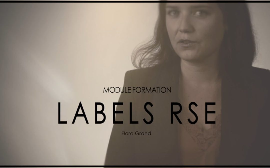 [e-Learning] Présentation Module 1 – Label RSE