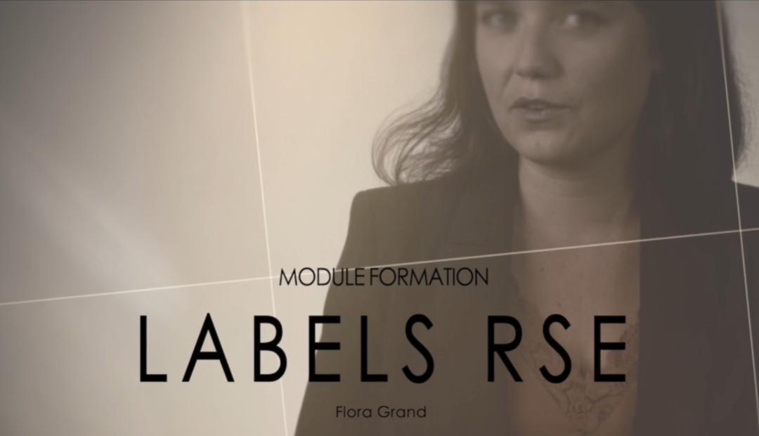 [RSE] – Identifier le Label Pertinent pour mon Activité.
