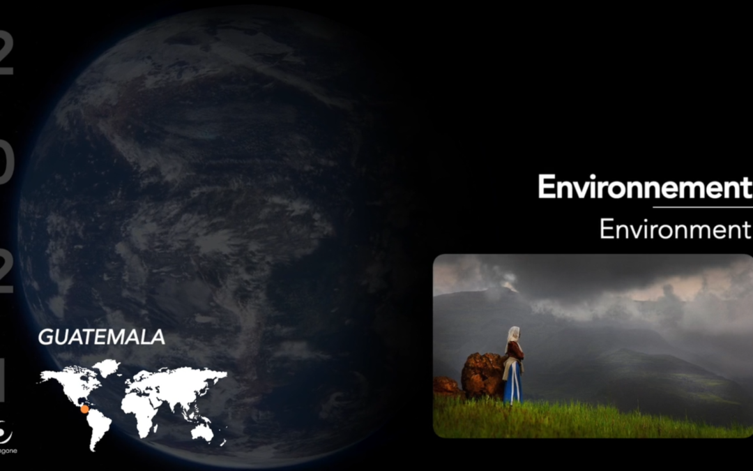 Parangone environnement